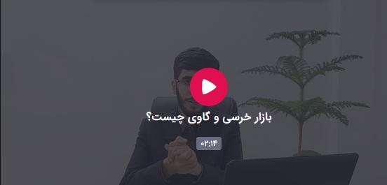تصویر ویدئو بازار خرسی و گاوی